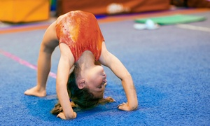 Platinum Gymnastics Academy: Gymnastics & Tumbling or Homeschool Fitness Classes at Platinum Gymnastics Academy (Up to 62% Off). Three Options.
