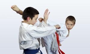 Burning Phoenix Taekwon-do: $149 for $338 Worth of Martial Arts — Burning Phoenix Taekwon-Do Martial Arts Academy