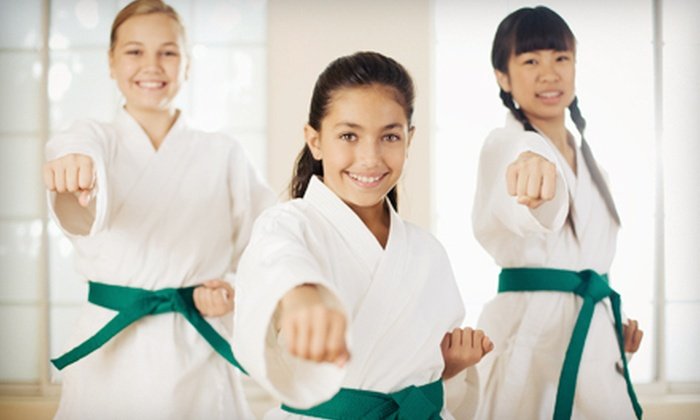 Voltage - Abington: 5 or 10 Kids' Karate Classes at Voltage (Up to 71% Off)