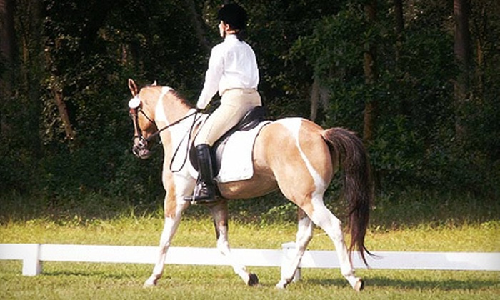 HorseFleet Academy - Bloomingdale: One, Three, or Five 90-Minute Horseback-Riding Lessons at HorseFleet Academy (Up to 57% Off)