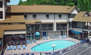 Sidney James Mountain Lodge: Stay at Sidney James Mountain Lodge in Gatlinburg, TN, with Dates into February