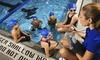 Swim Labs - Issaquah: Four Group or Parent and Tot Swim Lessons at Swim Labs (Up to 53% Off)