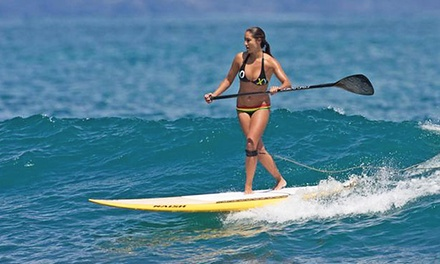 Punch Card for Five All-Day SUP Rentals or $30 for $60 Worth of Surf Gear at Covewater Paddle Surf