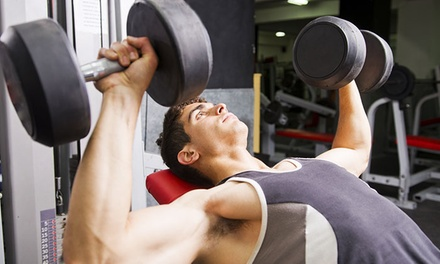 Two or Three One-Hour Personal Training Sessions at SiliconValleyFit (Up to 80% Off)