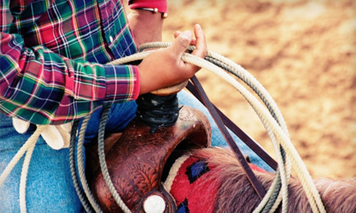 Arizona Cowboy College - Tonto National Forest: 90-Minute Trail Ride for One, Two, or Four or Summer Horse Camp at Arizona Cowboy College in Scottsdale (Up to 54% Off)