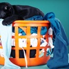 Up to 53% Off Laundry Service