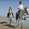 Up to 59% Off Horseback Rides at HorseSpa
