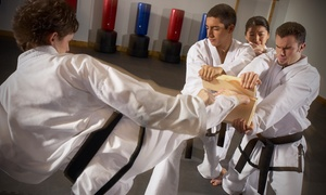 Grandmaster Dong's Studio: 10 Karate Classes or One Month of Karate Lessons at Grandmaster Dong's Studio (Up to 85% Off)