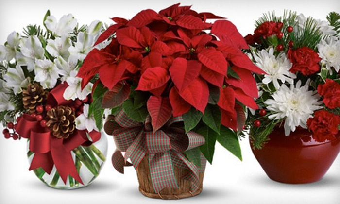 Norton's Flowers & Gifts - Multiple Locations: $20 for $40 Worth of Floral Arrangements from Norton's Flowers & Gifts