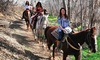 Trail Horse Adventures - Cottonwood: $73 for 60-Minute Horseback Trail Ride for Two at Trail Horse Adventures (Up to $130 Value)