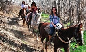 Trail Horse Adventures: $73 for 60-Minute Horseback Trail Ride for Two at Trail Horse Adventures (Up to $130 Value)