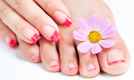 Classic or Shellac Manicure with Pedicure at Dante Salon & Wellness Spa (Up to 42% Off)
