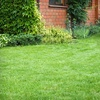 Up to 78% Off Fall Lawn Aeration and Seeding