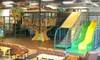 Chelsea TreeHouse - Chelsea: $16 for Five Visits to the Chelsea TreeHouse Indoor Playground ($32.50 Value)