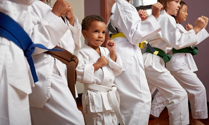 Millennium Martial Arts - Smithtown: Six Weeks of Kids' Karate Classes, or Three Adult Karate Classes at Millennium Martial Arts (Up to 78% Off)
