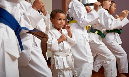 $60 Three Months of Kids' Martial Arts Classes at Platinum Mixed Martial Arts ($140 Value)