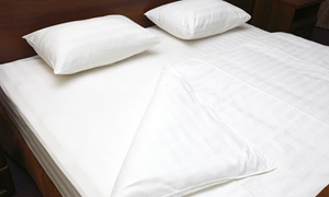 Organic Mattress Haven: $85 for $169 Worth of Mattresses — Organic Mattress Haven