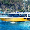 Up to 65% Off a Glass-Bottom Boat Tour
