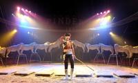 1 place pour assister au spectacle du Cirque Pinder à 15 € àRennes
