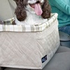 Solvit Deluxe Tagalong Pet Booster Seat