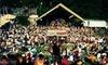 40th Annual Rock N Reggae Festival  - Woodbury: One-Day Pass or Two-Day VIP Pass to 40th Annual Rock N Reggae Festival at Woodbury Ski Area (Up to 51% Off)