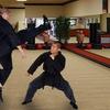 91% Off Martial-Arts or Self-Defense Classes
