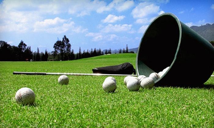 Oakhaven Golf Club - Delaware: Driving-Range Balls or One-Year Unlimited Driving-Range Membership at Oakhaven Golf Club in Delaware (Up to 56% Off)