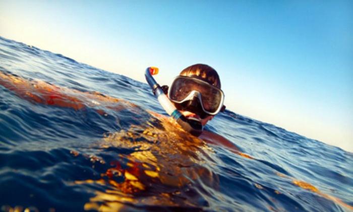 Ocean Planet Adventures - Sooke: Snorkelling Tour for Two or Four from Ocean Planet Adventures (Up to 53% Off)