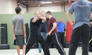 Buffalo Grove Martial Arts: $63 for $139 Worth of Martial-Arts Lessons — Buffalo Grove Martial Arts