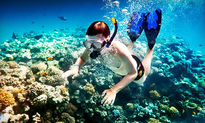 Blu Water Scuba - Linton Hall: $30 for a Two-Hour Introductory Diving Class at Blu Water Scuba ($79.95 Value)