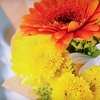 Up to 62% Off Floral Arrangements at We Luv Flowers by Faith