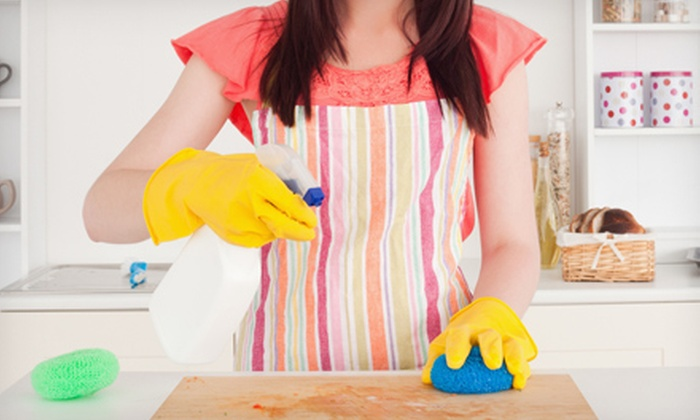 OCD Cleaning - Albany / Capital Region: One or Two Three-Hour Housecleaning Sessions from OCD Cleaning (Up to 55% Off)