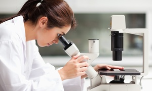 Żyję Zdrowo: Badanie żywej kropli krwi wraz z konsultacją dietetyczną od 74,99 zł w Żyję Zdrowo – 3 lokalizacje