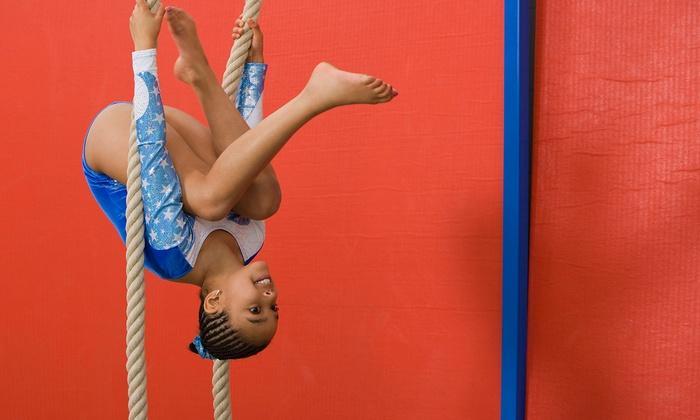 Carolina Flipz - Near Ballantyne and Fort Mill: One Month of Mini, Junior, or Rec Gymnastics Classes at Carolina Flipz (Up to 50% Off)