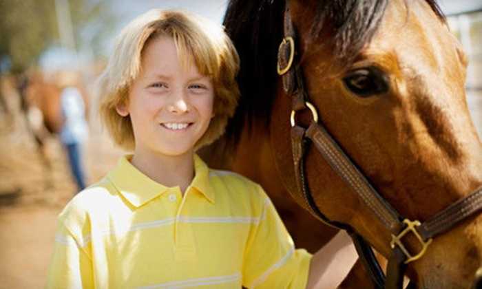 Chase Farms - Hollis: One, Three, or Five Private Horse-Riding Lessons or Three Group Lessons from Chase Farms (Up to 66% Off)