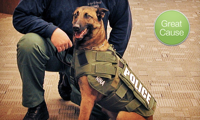 Project Paws Alive, Inc.: $10 Donation to Help Provide Protective Vests for Dogs