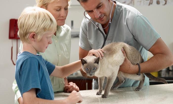 Am/pm Veterinary Hospital - Yorba Linda: $39 for $83 Worth of Veterinary Services — AM/PM VETERINARY HOSPITAL
