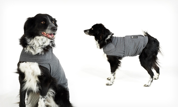 American Kennel Club Calm Coat: American Kennel Club Calm Coat. Free Returns.