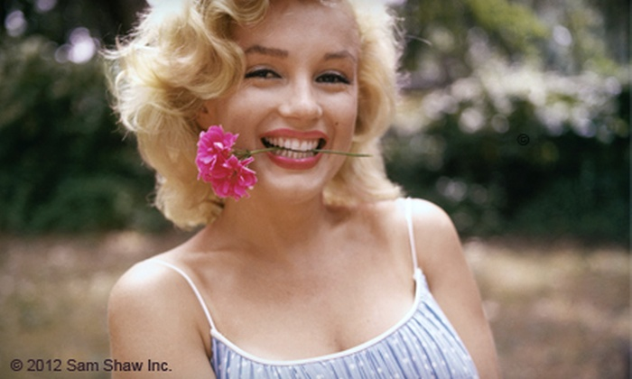 Marilyn Monroe Cafe - Clarkson: Two or Three Groupons, Each Good for $8 Worth of Café Food and Drinks at Marilyn Monroe Cafe (Half Off)