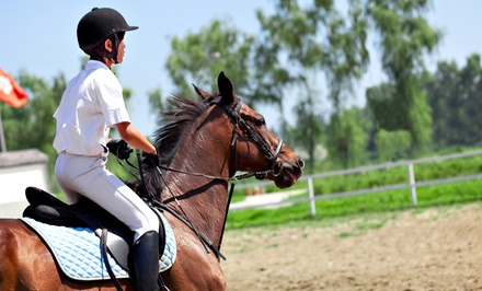 One or Two 30-Minute Horseback-Riding Lessons at Summit Farm in North Salem (58% Off)