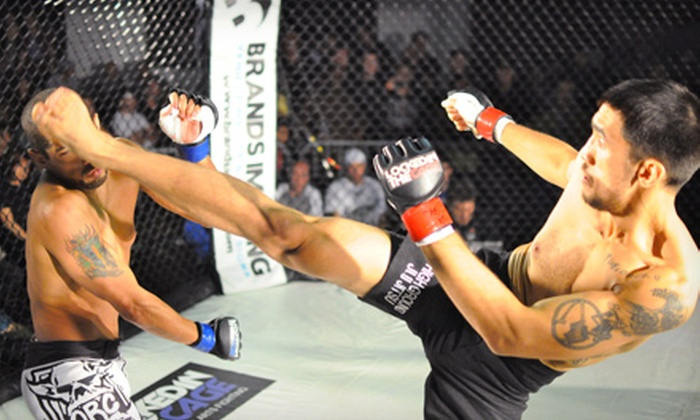 Locked in the Cage 15 - Juniata Park -  Feltonville: Locked in the Cage 15 MMA Event on Saturday, April 13, at Locked in the Cage Arena (Up to 46% Off). Two Ticket Options.