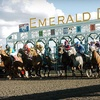 $10 for Horseracing at Emerald Downs in Auburn