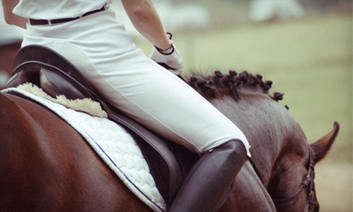 Brannon Stables - Lexington-Fayette: Private Horseback Riding Lesson for One or Private Trail Ride for Two at Brannon Stables in Georgetown (Up to 68% Off)