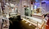 Computer History Museum - Mountain View: Day at Computer History Museum for Two or Four (Up to52%Off)