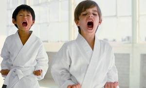 Eagle Mixed Martial Arts: 5, 10, or 20 Kids' Classes at Eagle Mixed Martial Arts (Up to 81% Off)