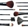 $19.99 for a 12-Piece Makeup-Brush Set