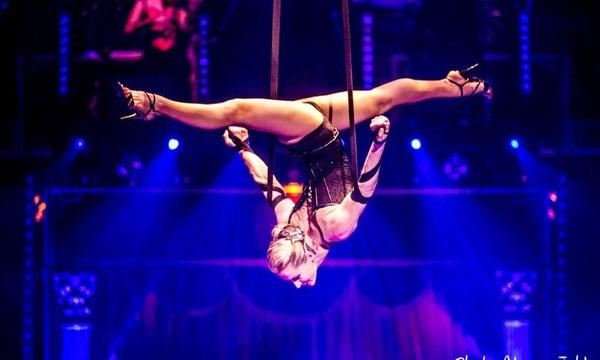 Cirque De Noel D Offenbourg Ticket D Entree A 15 P P Avec 1 Ou 2 Nuits A L Hotel Mercure 4 En Option Des 118 Pour 2