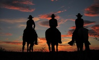 Family-Friendly Dude Ranch in Arizona