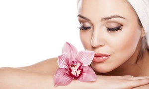 La Mode Hair Design and Spa: One, Two, or Three Microdermabrasion Packages at La Mode Hair Design and Spa (Up to 67% Off)
