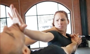 Elite Training Center: 10 Krav Maga Classes or One Month of Unlimited Krav Maga Classes at Elite Training Center (Up to 84% Off)